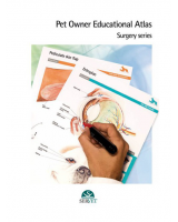 Pet owner educational atlas. Surgery