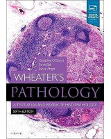 Wheater's Pathology. A Text, Atlas and Review of Histopathology