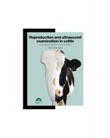 Reproduction and ultrasound. Examination in cattle